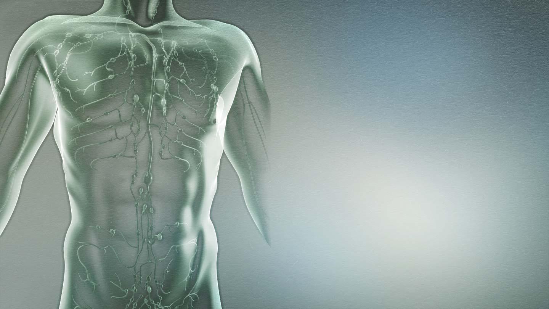 Разбирање на лимфомот