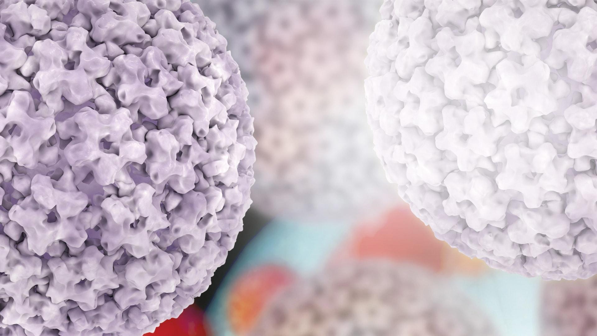 ŽPV reikšmė gimdos kaklelio vėžiui