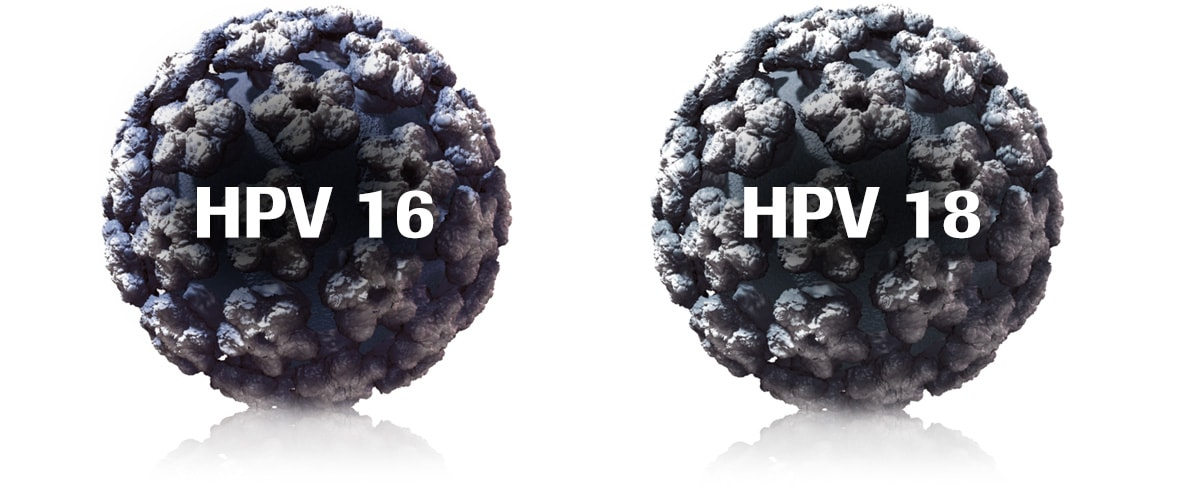What are HPV 16 and HPV 18?