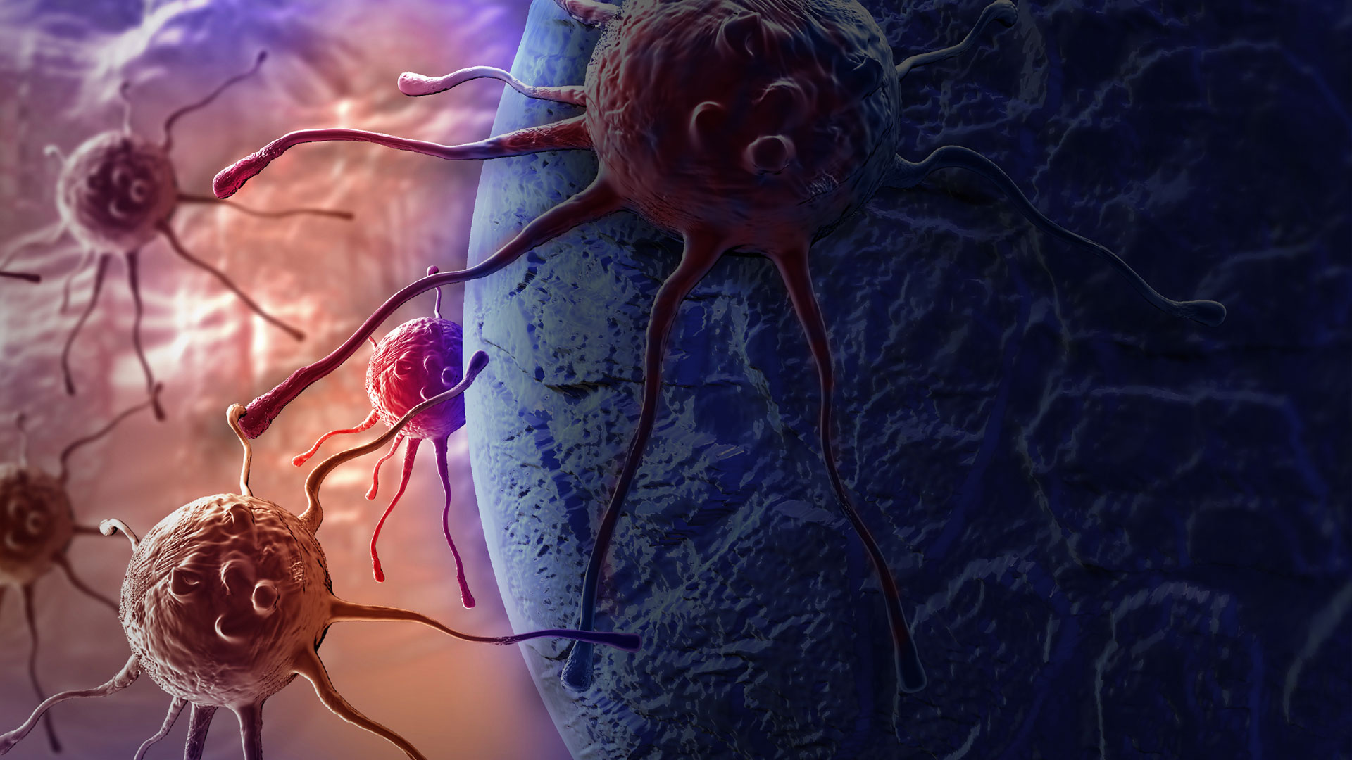 There are more than 200 types and subtypes of cancer
