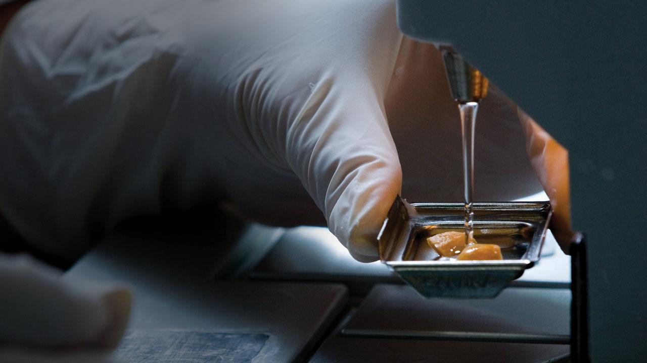 Tissue diagnostics strengthened
