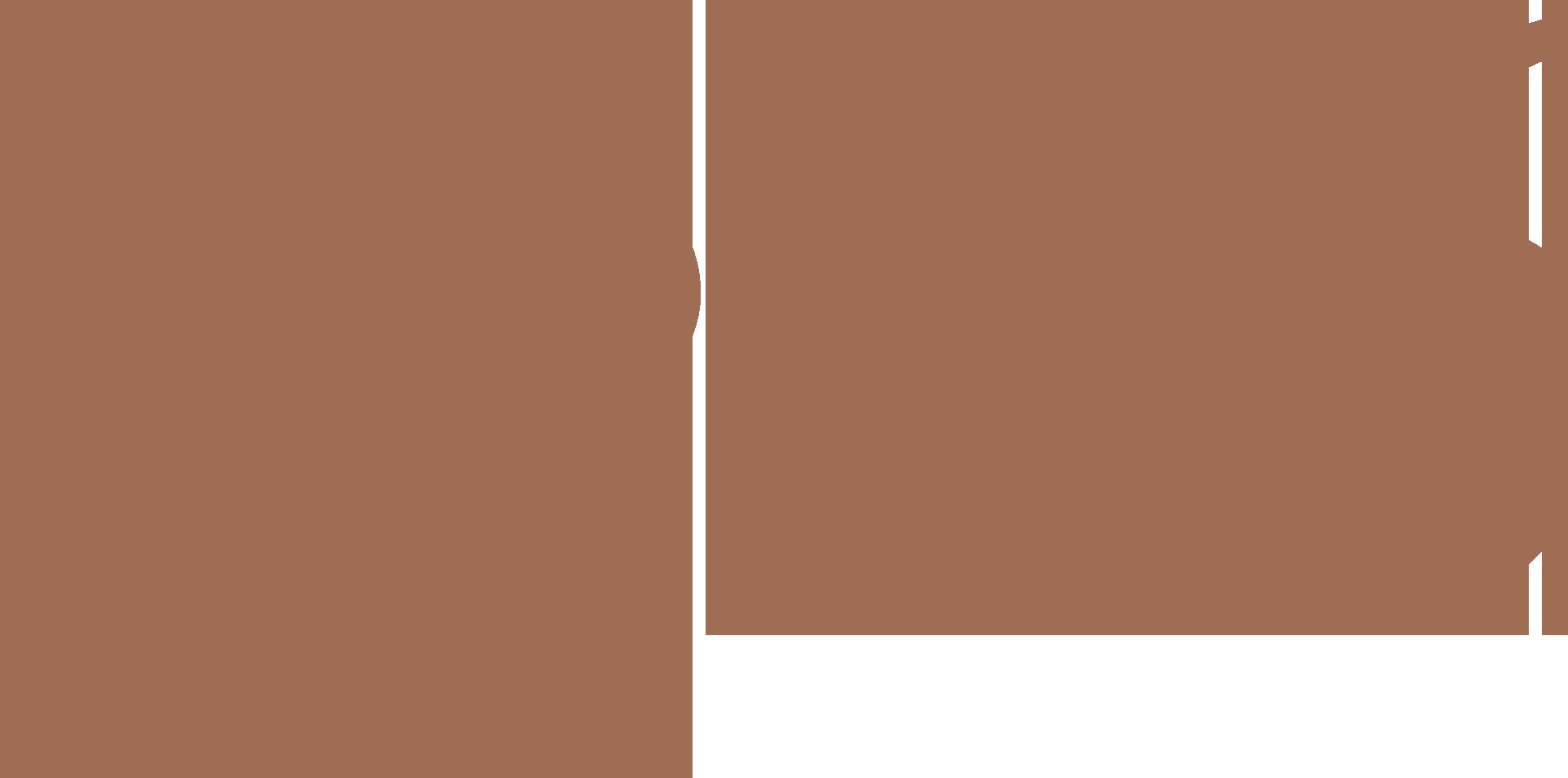1896年